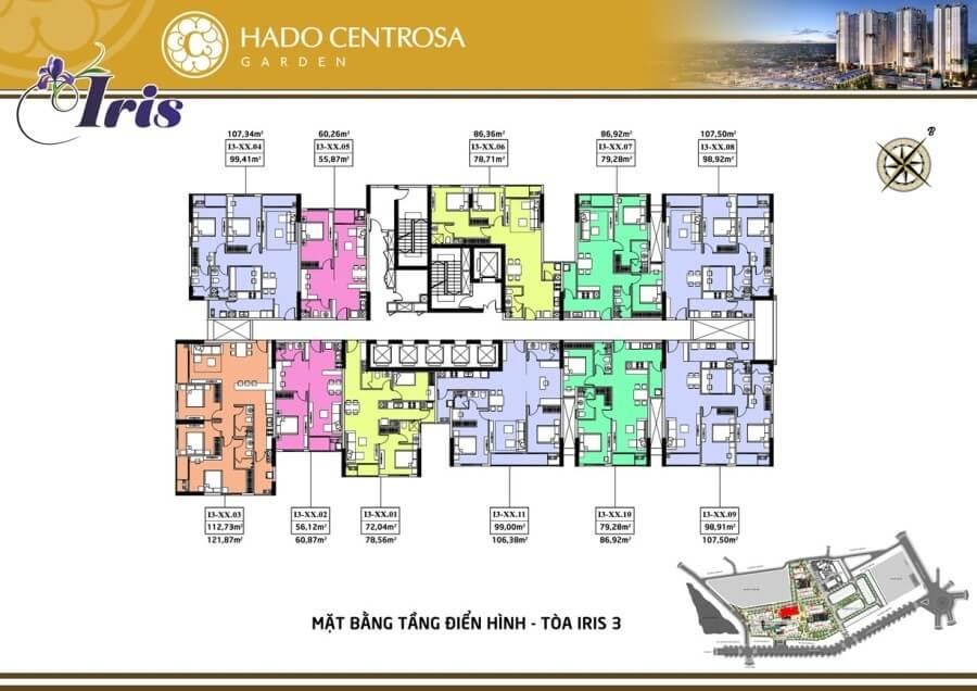 Iris 3 Hado Centrosa Garden