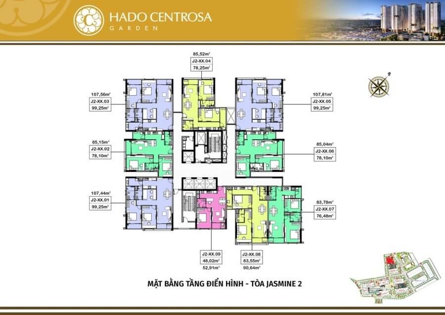 Jasmine 2 Hado Centrosa Garden