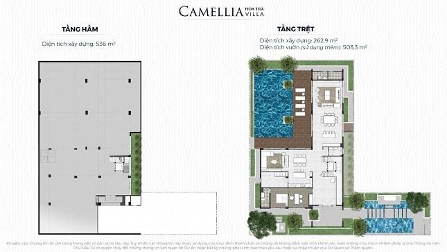 CAMELLIA hoa trà Villa